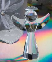 Choice Crystal Angel Favours
